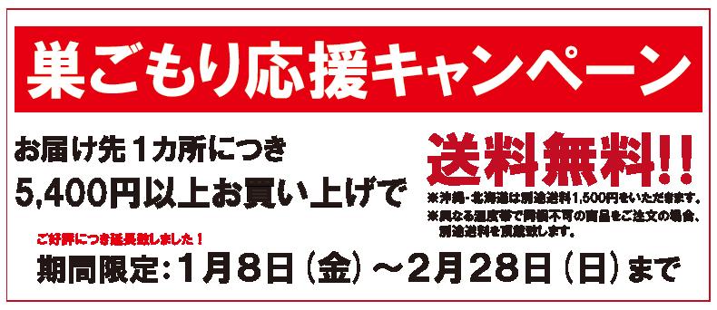 5,400円以上送料無料!